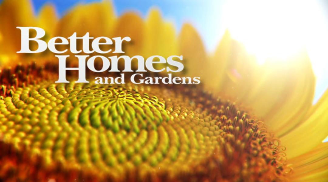 Home Design Show Tv Home Photo Style