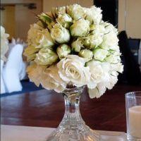 Charlie Whitmore Easthampton White Roses