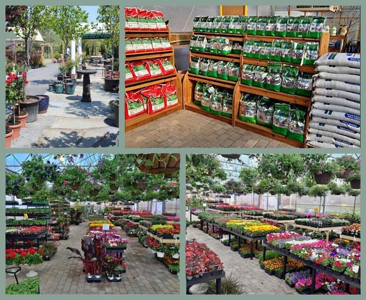 Bay Gardens Garden Center
